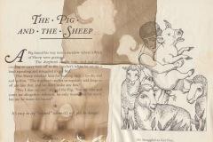 pig-sheep