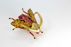 insecta-006