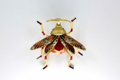 insecta-009
