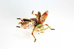 insecta-010