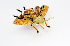 insecta-014