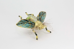 insecta-018