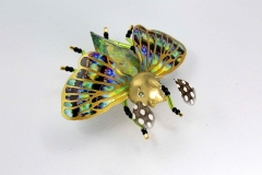 insecta-022
