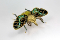 insecta-024